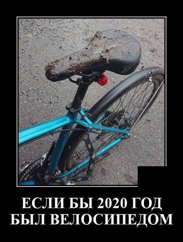 205921_19_trinixy_ru.jpg