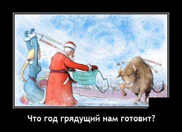 205921_9_trinixy_ru.jpg