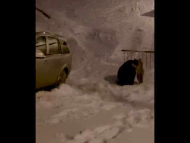 На ногах стоять не мог, на за руль сел: в Москве пьяный водитель решил покататься с горки на машине
