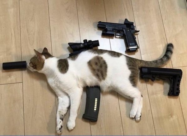 Наши агенты прислали фотоматериалы нового вражеского оружия
