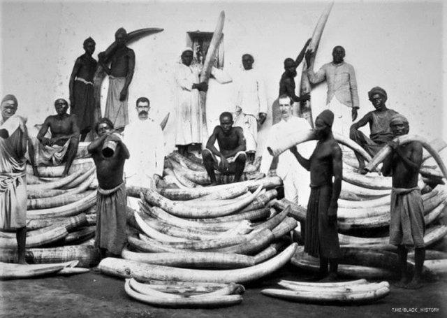 Торговцы слоновьей костью в районе Великих озер. Африка, 1880-е.