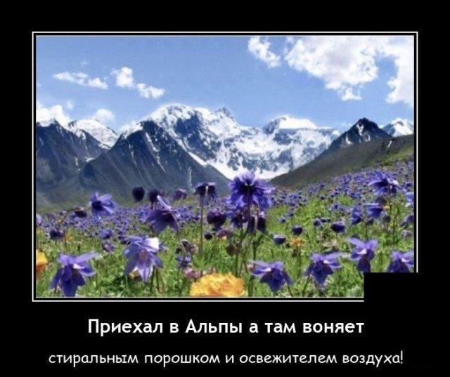 Демотиватор про Альпы