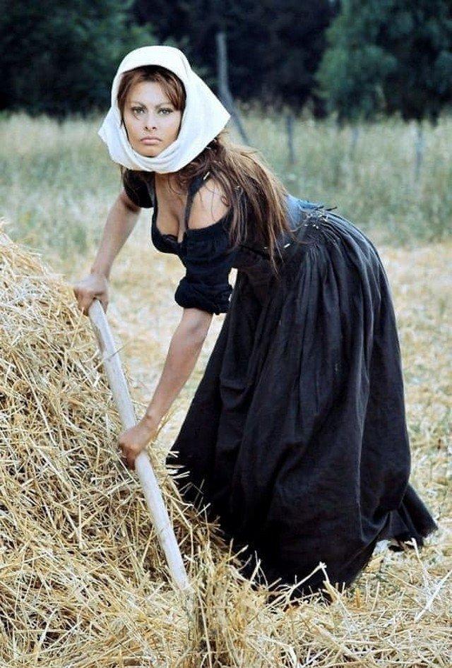 Софи Лорен на сенокосе, 1967 год.