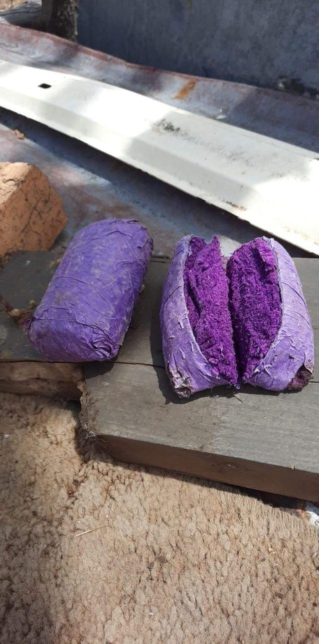 Издалека мне показалось, что это пушистая фиолетовая шаурма