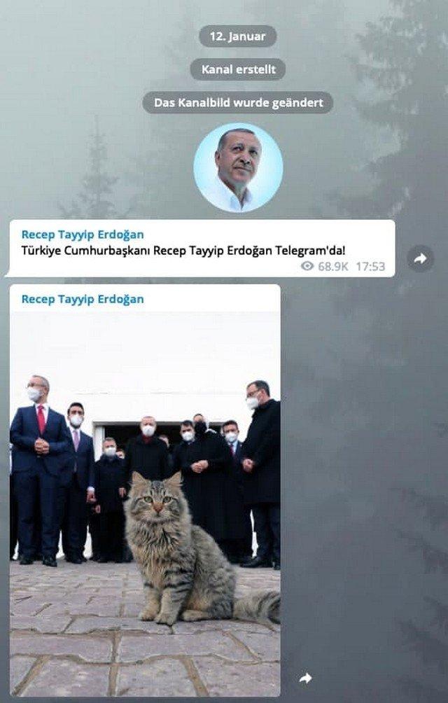 Фото дня: Президент Турции Реджеп Эрдоган зарегистрировался в Telegram и сразу пошел с козырей