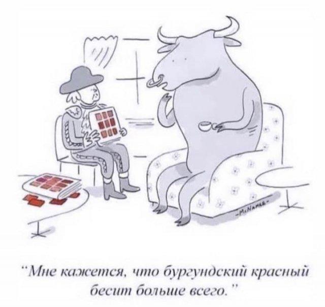 206754_17_trinixy_ru.jpg