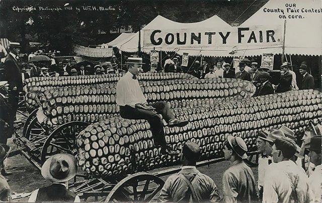 Окружная ярмарка кукурузы