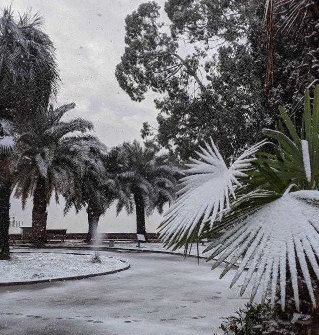 Настоящая зима в Абхазии