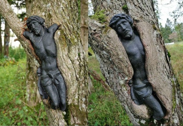 Скульптура Иисуса на заброшенном кладбище в Польше медленно поглощается деревом
