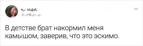 твит про эскимо