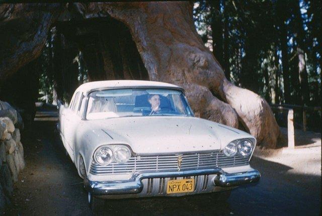 В путешествии по Калифорнии на новеньком 1957 Plymouth.