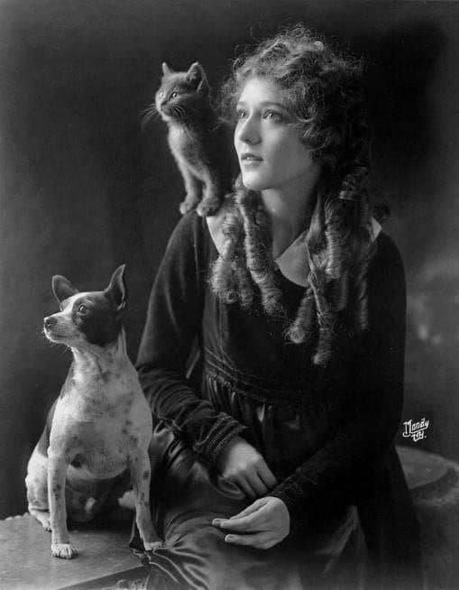 Mэpи Пикфopд с котикoм и пёcиком, 1916 гoд.