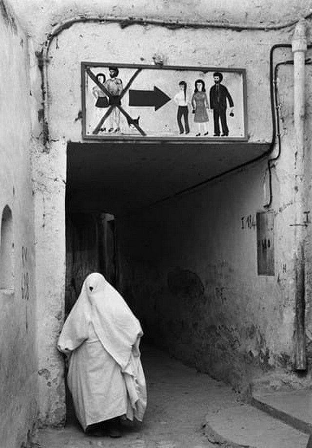 «Юбки, шорты и коты запрещены!», 1974, Алжир