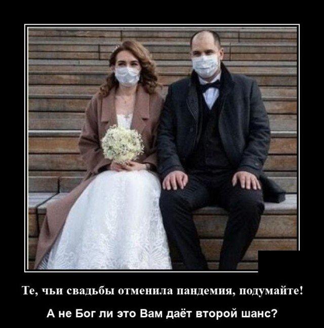 Демотиватор про свадьбы