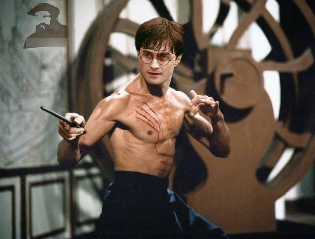 Гарри Поттер + Брюс Ли.