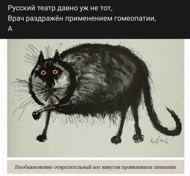 стих про кота