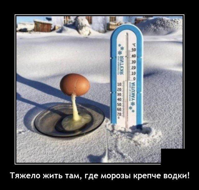 Демотиватор про морозы