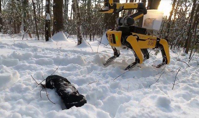 У робопса Spot из Boston Dynamics появилась «рука»
