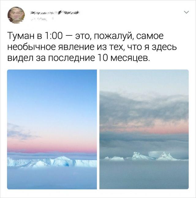 твит про туман