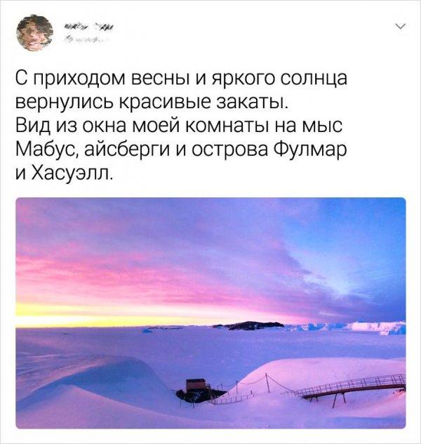 твит про закаты