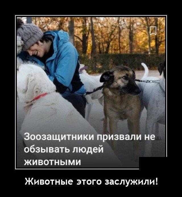 Демотиватор про зоозащитников
