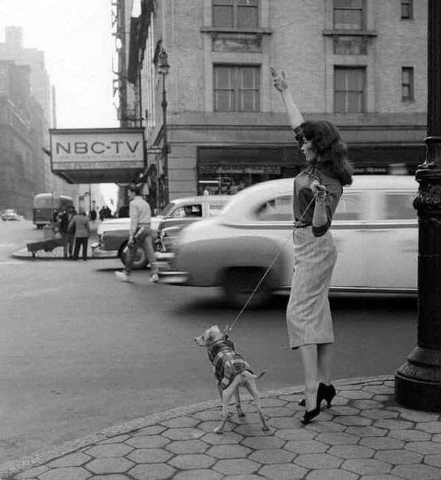 Жeнщина ловит тaкси. Нью-Йopк, 1956 гoд