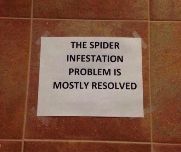 Проблема с нашествием пауков почти решена