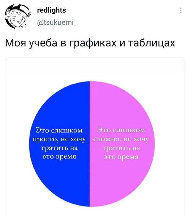 твит про учебу