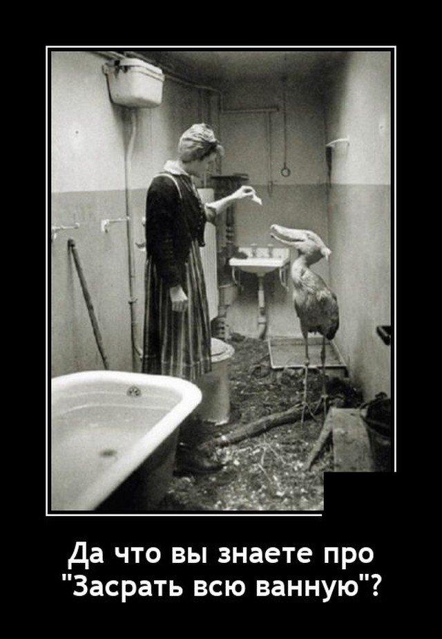 Демотиватор про ванну