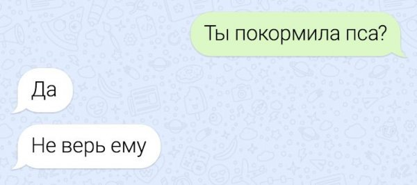 диалог про пса