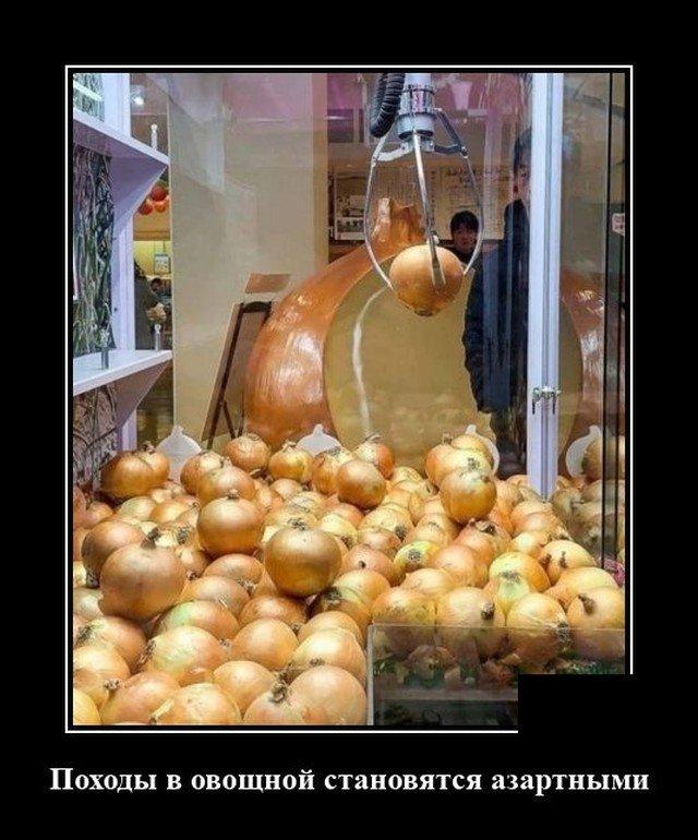 Демотиватор про овощной