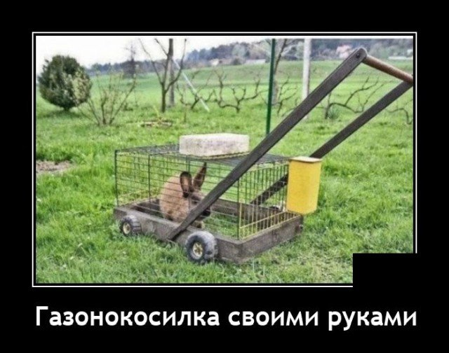 Демотиватор про газонокосилку