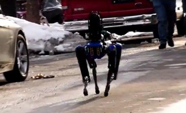 Робопес из Boston Dynamics теперь служит в рядах полиции Бронкса
