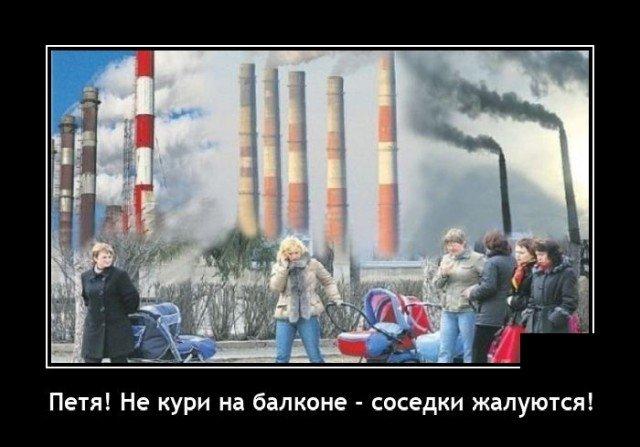 208581_10_trinixy_ru.jpg