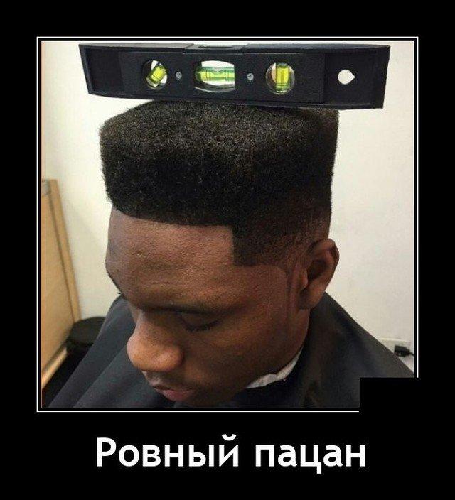 208581_15_trinixy_ru.jpg