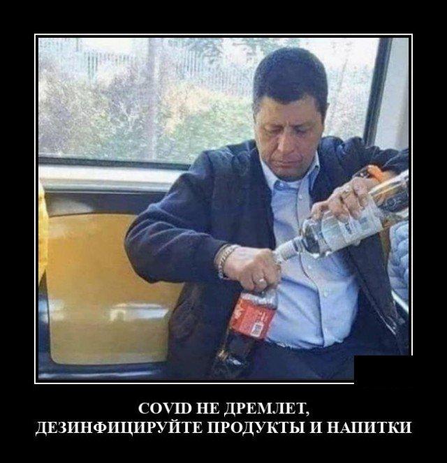 208581_17_trinixy_ru.jpg