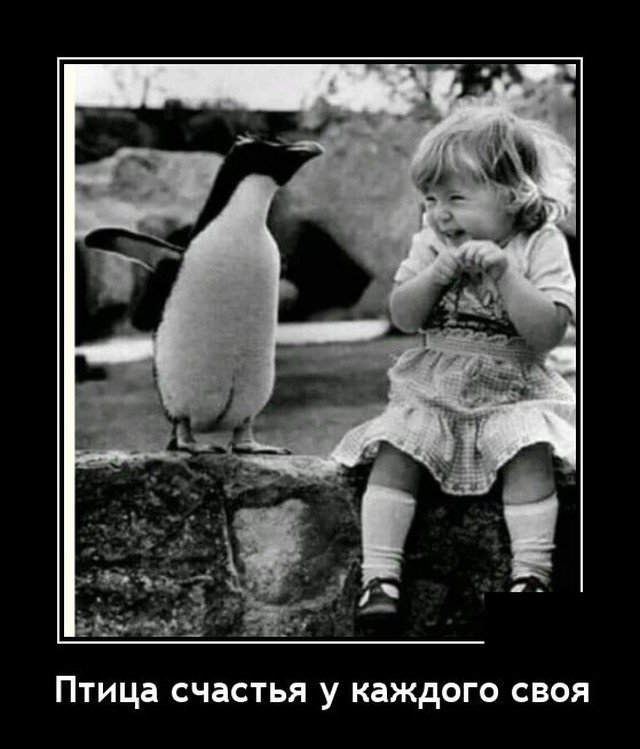 208581_20_trinixy_ru.jpg