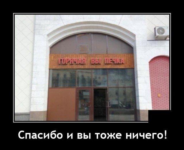 208581_7_trinixy_ru.jpg