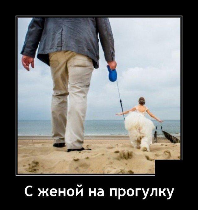 208581_8_trinixy_ru.jpg