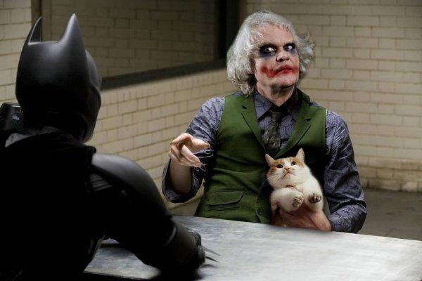 Юрий Куклачёв в роли Джокера в «Бэтмене»