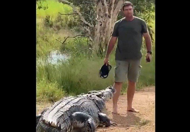 Мэтт Райт и крокодил