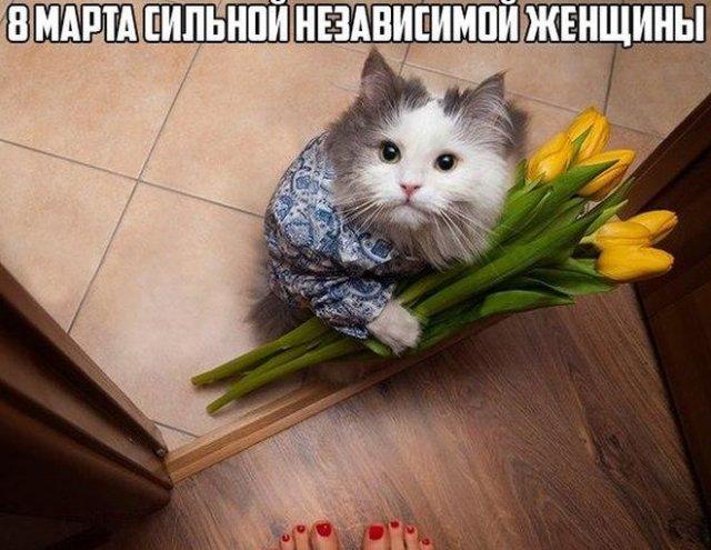Приколы и мемы про 8 марта