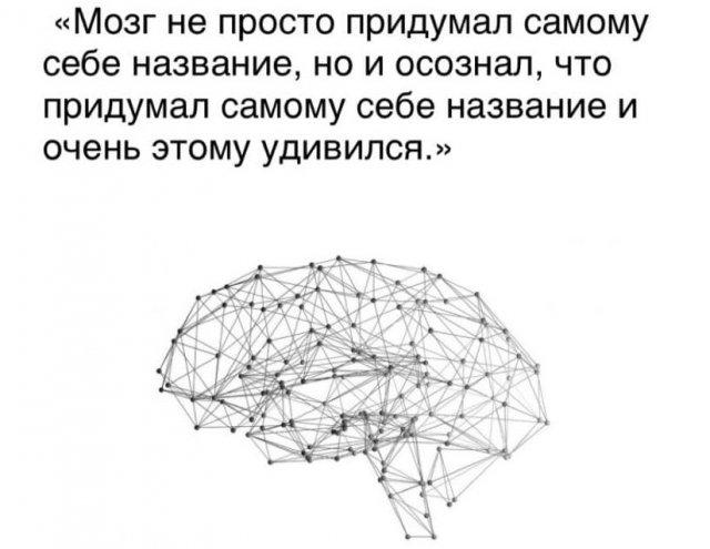 Философские рассуждения пользователей Сети