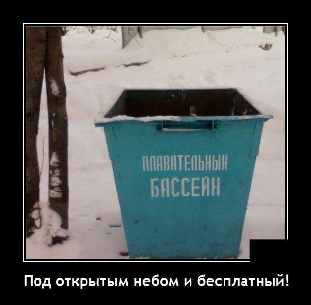 209171_4_trinixy_ru.jpg
