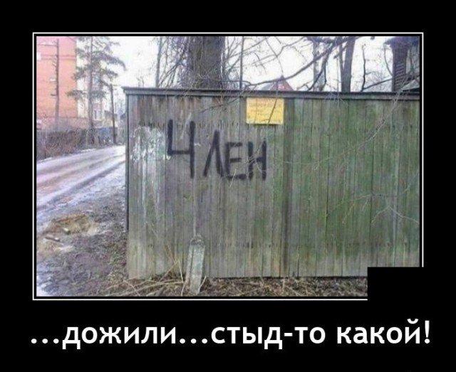 209233_12_trinixy_ru.jpg