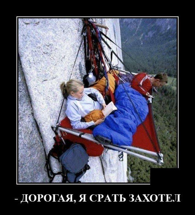 209233_19_trinixy_ru.jpg