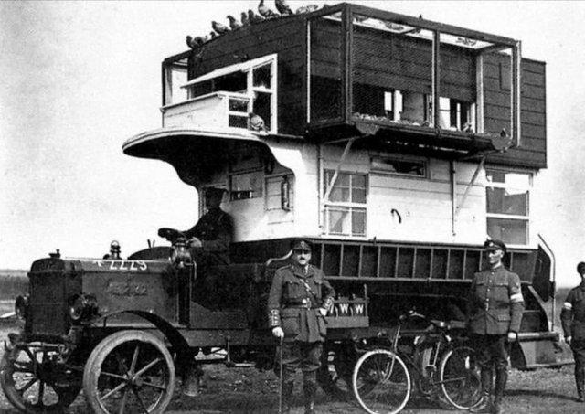 Передвижная служба голубиной почты. Германия, 1915 год.