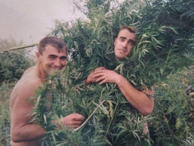 На конопляном поле, 1990-е