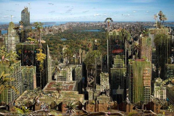 Вид на Центральный Парк, Нью-Йорк