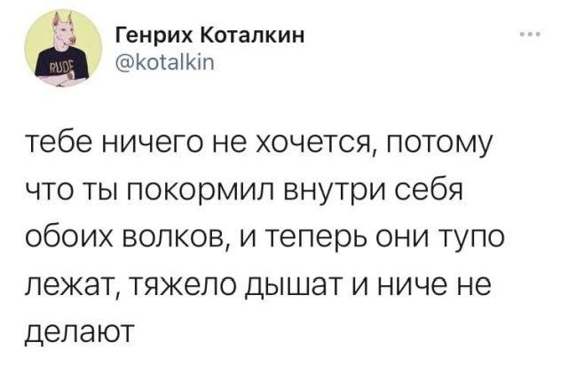твит про волков